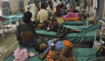 bihar mid day meal tragedy bihar court issues...
