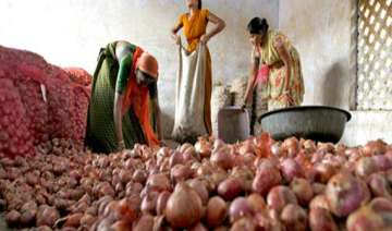 cyclone phailin shoots up onion prices in nashik...