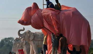 ec rejects bsp plea on covering statues - India TV