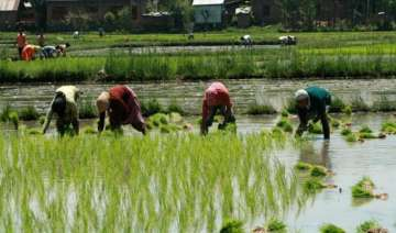 early monsoon beneficial for kharif crops - India...