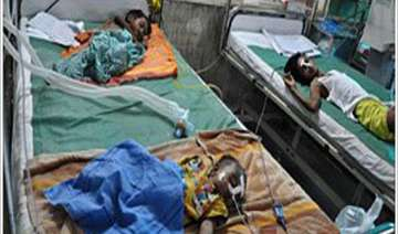 encephalitis claims 13 more lives toll climbs to...