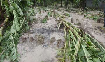 heavy rains damage crops and houses in andhra...