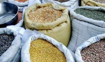 government puts stock limits on pulses by big...