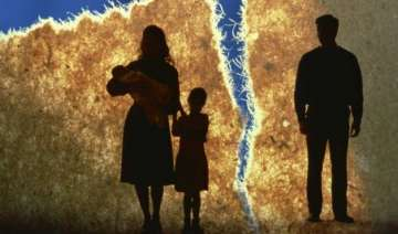 law panel for joint custody of child in divorce...