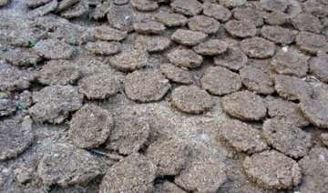 burning of cow dung cakes banned near taj mahal -...