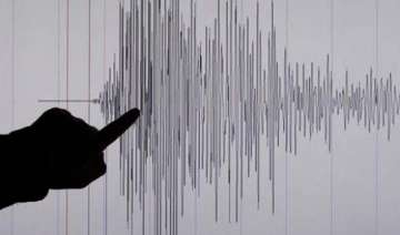 mild earthquake hits delhi no damage reported -...