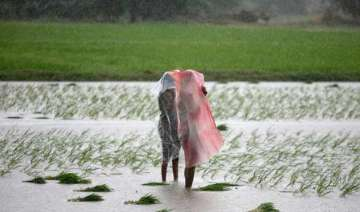monsoon sub normal farm output fell last season...