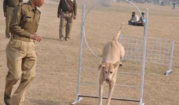 police dog crushed to death by truck in bihar 5...
