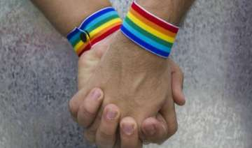 india has a strong 2.5 million gay community -...
