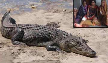 odisha woman wins fight against crocodile just...