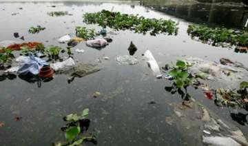 environmentalists welcome green court ruling on...