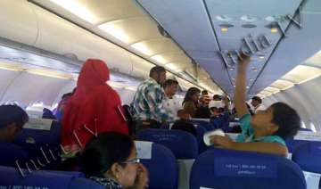 indigo srinagar mum flight suffers bird hit...