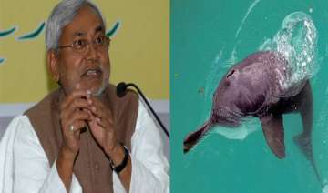 nitish wants to set up dolphin research centre in...