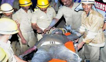 one dead three injured in chennai fire - India TV