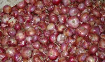 onion prices remain high at rs 60/kg wholesale...