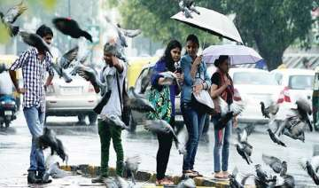 rains lash delhi friday more in store saturday -...