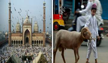 significance of eid al adha the feast of...