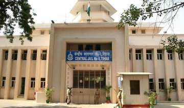tihar jail to install body scanner - India TV