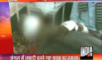 two pilibhit villagers mauled by bear - India TV