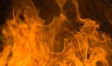 woman dies as house catches fire in delhi - India...