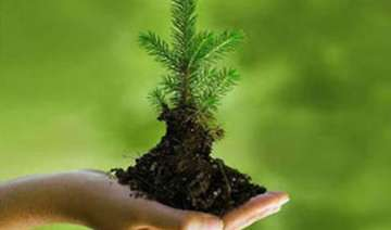 world environment day india s green mission...