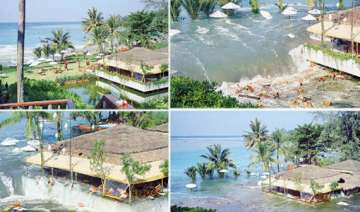 7th anniversary of tsunami observed along...