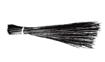 aap officially launches broom as party symbol -...