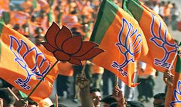 bjp pips congress others in lok sabha poll...