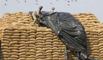 food security bill just a vote catching tool for...