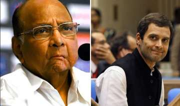 i can t work with rahul gandhi sharad pawar -...