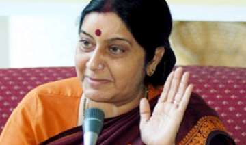 bjp hints at supporting n liability bill - India...