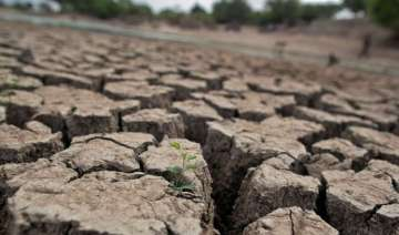 drought declared in 20 districts of maharashtra -...