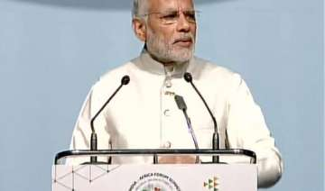 india africa should pitch for unsc reforms says...