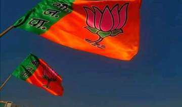 delhi polls bjp union ministers mps given charge...