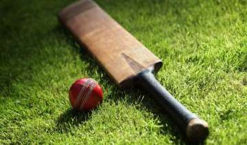 teenage cricketer dies in pakistan after hit on...