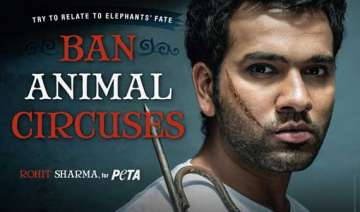 rohit stands up against treatment to circus...