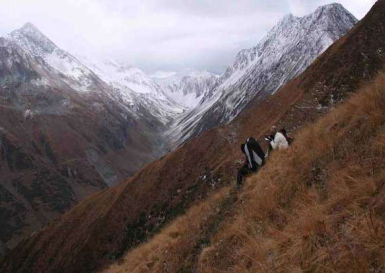great himalayan national park gets unesco world heritage tag- India Tv
