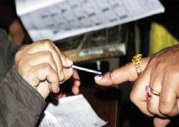 brisk to moderate polling in tehri bypoll in uttarakhand- India Tv