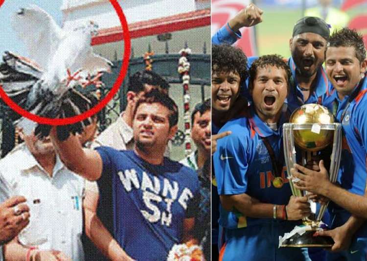 Raina Frees 11 White Pigeons To Celebrate WC Win