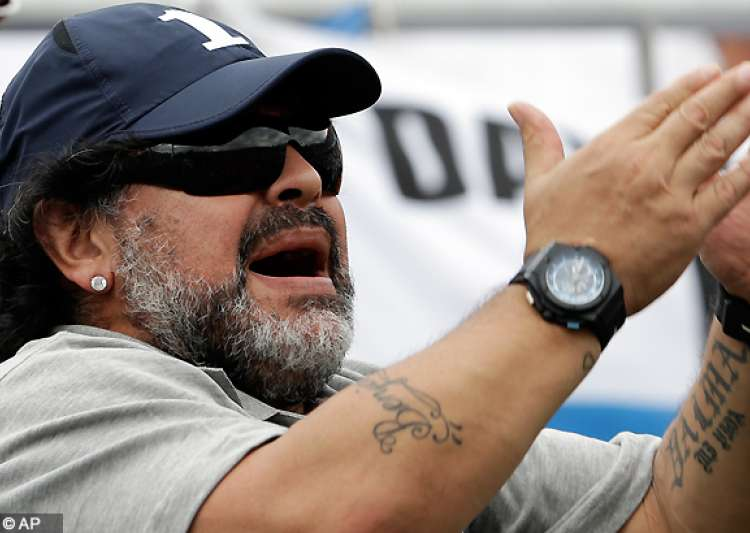 diego maradona s partner says she s pregnant- India Tv