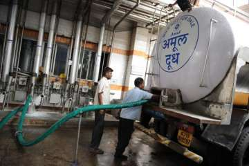 India, Amul, Camel Milk