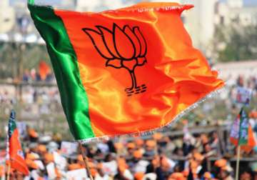 A BJP workers waves party flag at a rally -...