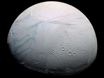 Saturn moon Enceladus has necessary conditions...