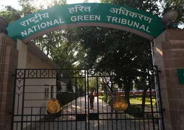 NGT seeks report on cattle blood flowing into...