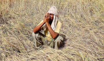 Three farmers' suicides reported in Madhya...