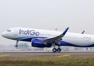 IndiGo interested in Air India, others might...