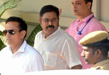 Dhinakaran came out on bail in the EC bribery...