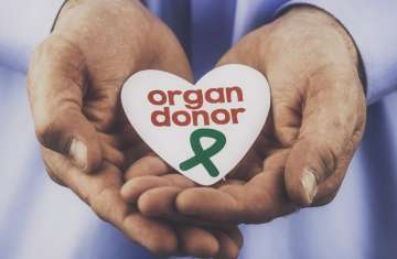 organ donor youngest surat