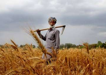 Agriculture sector didn't see reforms for 25...
