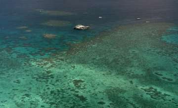 The Agincourt Reef in 2001, located about 30...